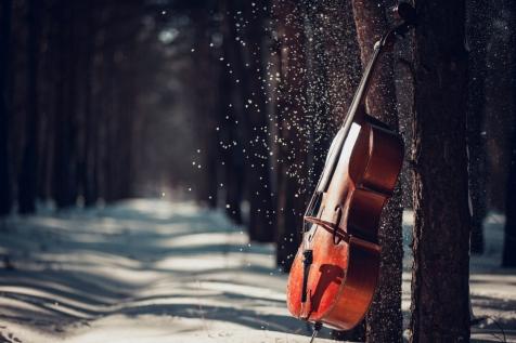 Cello in snow